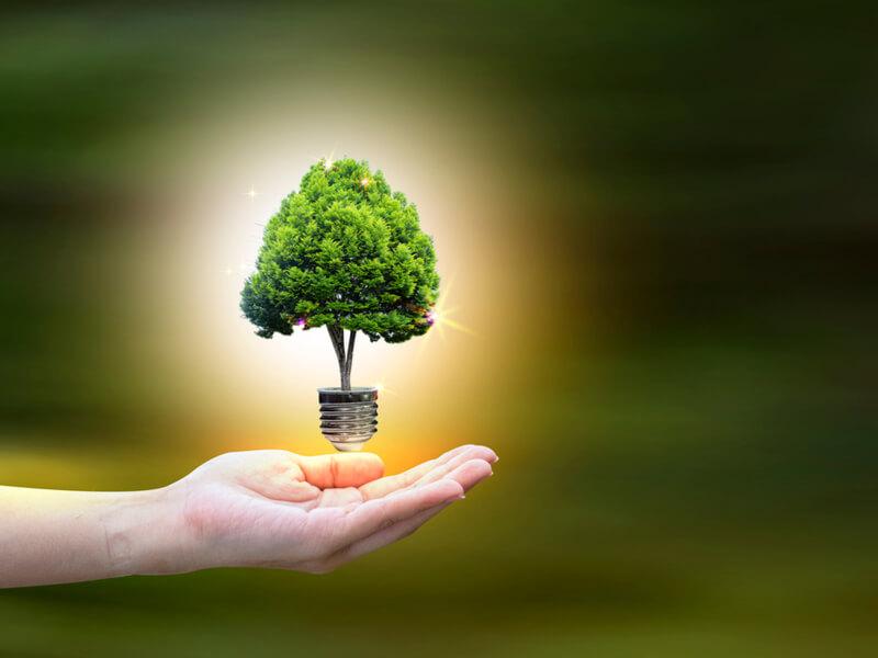Is CHP Renewable Energy?